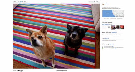 flickrhd Flickr presenta su nueva función Liquid Layout