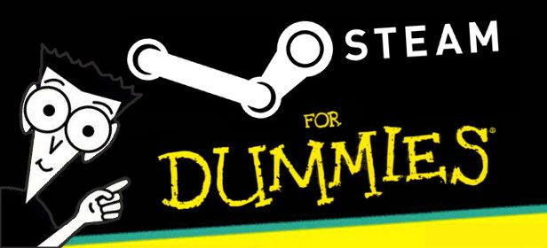 steam for dummies