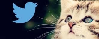 Cómo crear GIFs animados y estrenar la nueva función de Twitter header