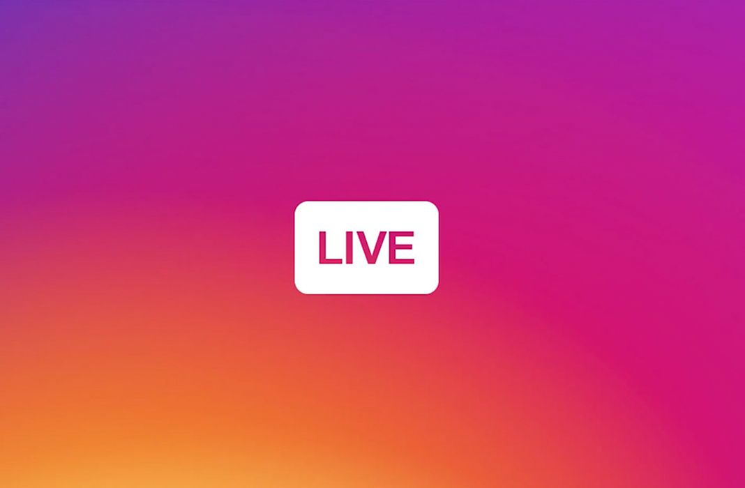 Instagram Live Contactos