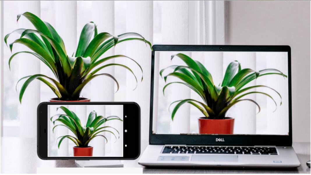 Iriun Webcam funcionando en el móvil y el PC