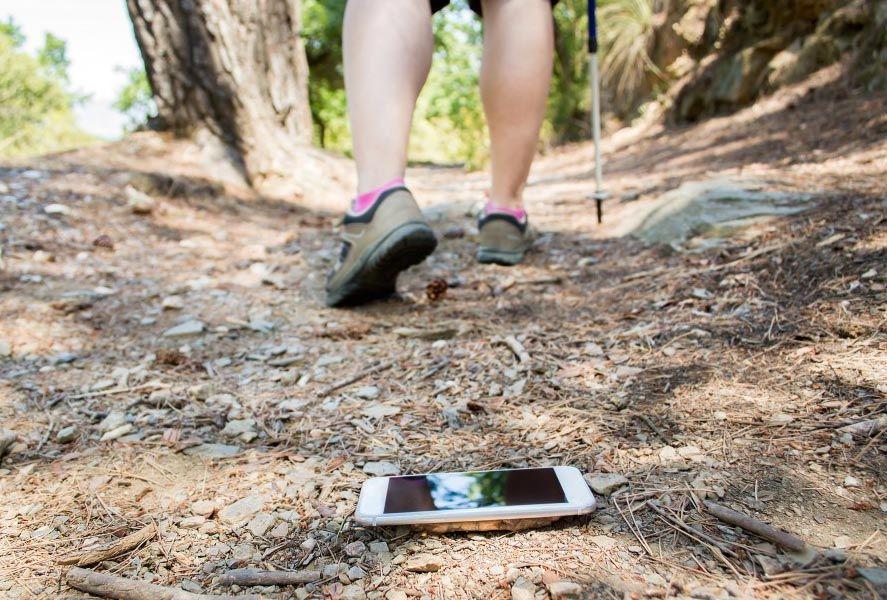 Smartphone perdido en el bosque